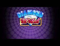 Diamond Wild Slot - Photo