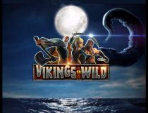 Vikings Go Wild Slot - Photo