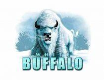 White Buffalo Slot - Photo
