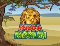 Mega Moolah Slot - Photo