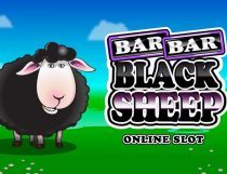 Bar Bar Black Sheep Slot - Photo