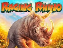 Raging Rhino Slot - Photo