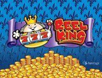 Reel King Potty Slot - Photo
