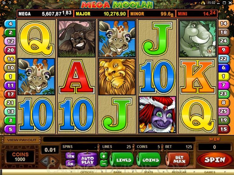 casino slot game 800x600