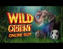 Wild Orient Slot - Photo