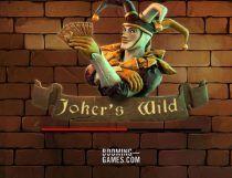 Jokers Wild Slot - Photo