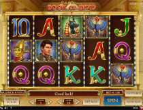 Book of Dead Slot - Photo