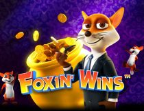 Foxin Wins Slot - Photo