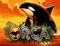 Orca Slot - Photo