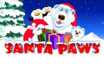 Santa Paws Slot - Photo