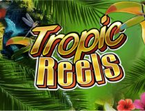 Tropic Reels Slot - Photo