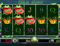 Wild Frog Slot - Photo