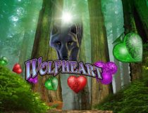 Wolfheart Slot - Photo