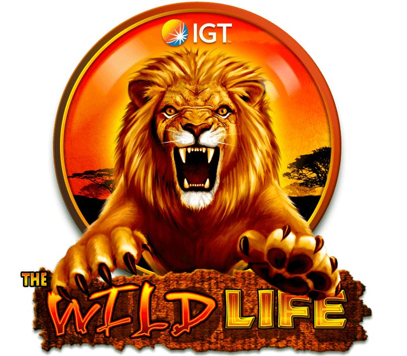 The Wild Life Slot