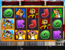 Top Cat Slot - Photo