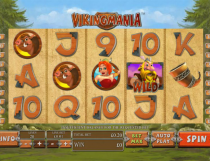 Viking Mania Slot - Photo