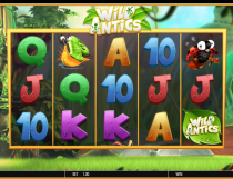 Wild Antics Slot - Photo