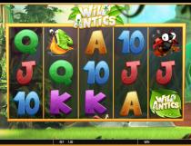 Wild Antics Slot - Photo