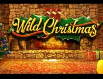 Wild Christmas Slot - Photo