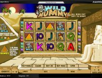 Wild Mummy Slot - Photo