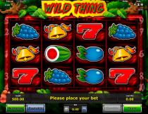 Wild Thing Slot - Photo