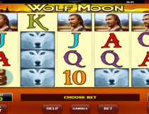 Wolf Moon Slot - Photo